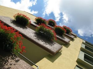 balconies with geraniums